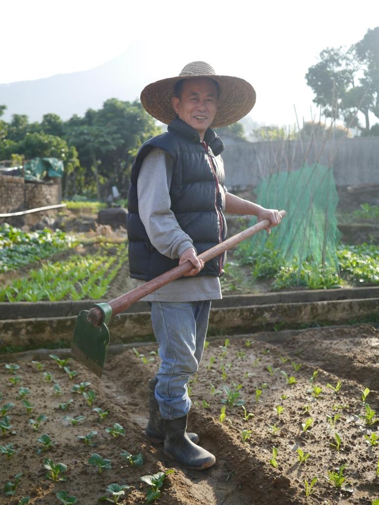 范生, 八鄉大嶺村, 耕作數十年